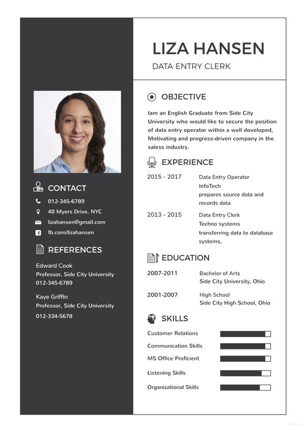 a resume template on word  Data Entry Resume Template - 13+ Free Word, Excel, PDF ..