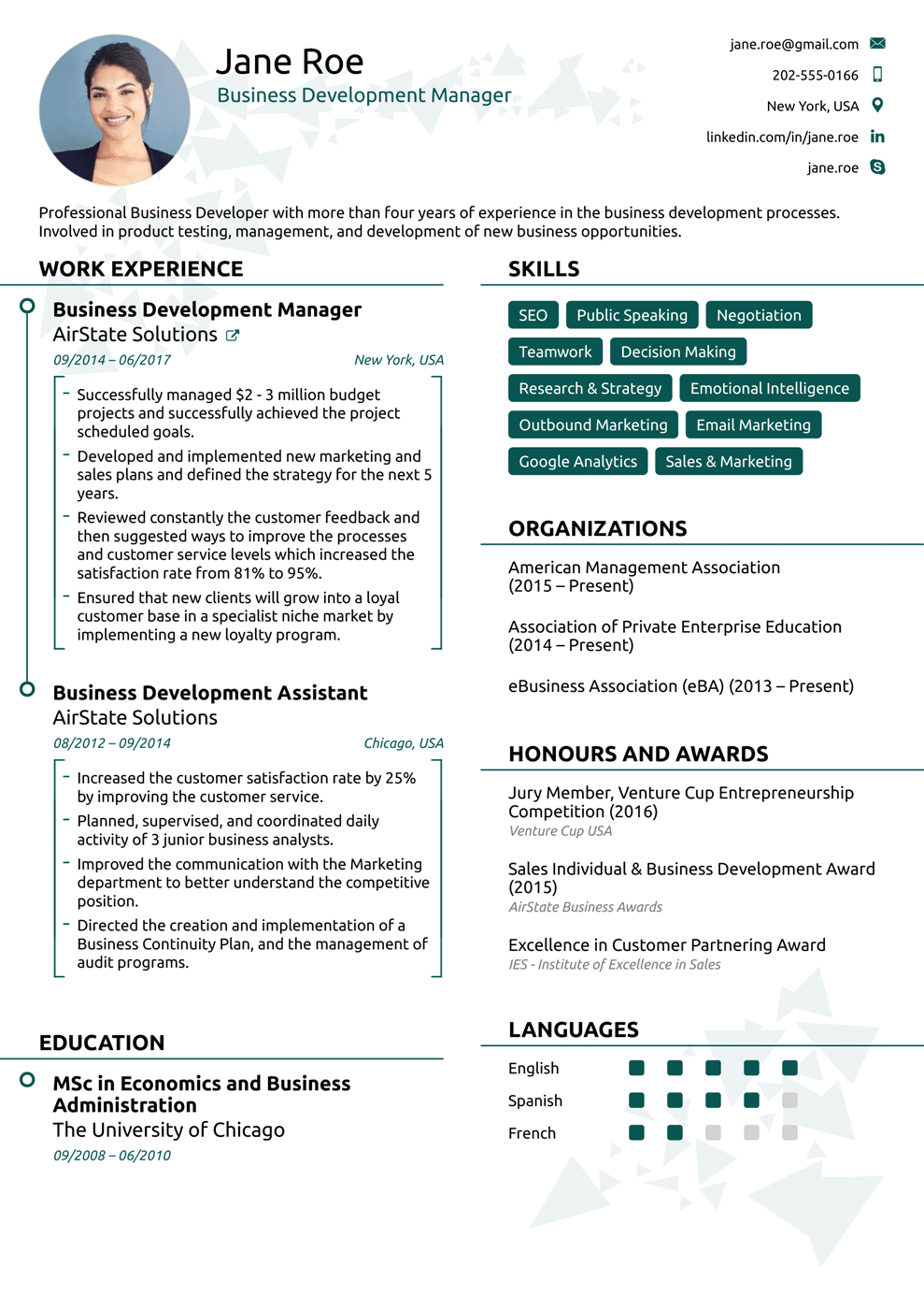 young professional resume template  How to Make or Write a Professional Resume or CV ..